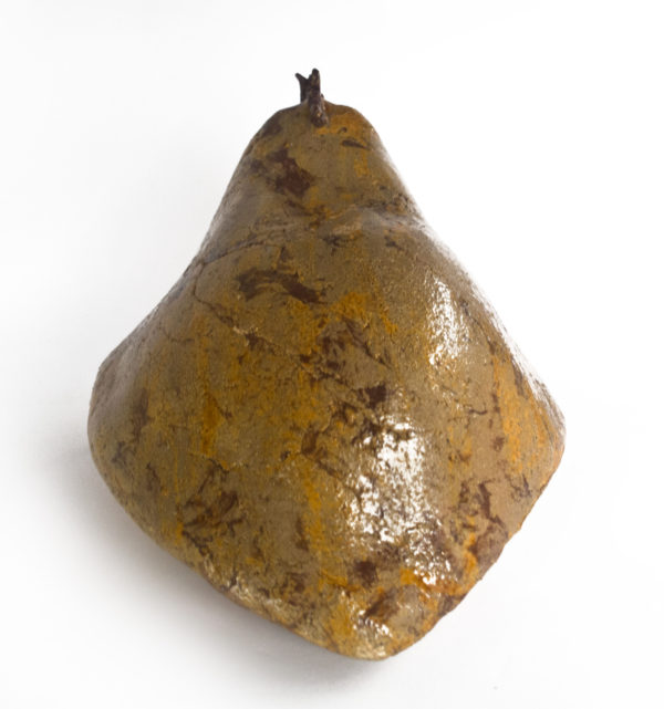 szamotowa kura domowa